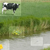 """""""Lente aan de waterkant voor het digibord door Gynzy, software voor het digitale schoolbord"""""""